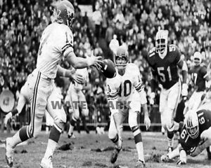 CFL 1970 Grey Cup Calgary Stamperders QB Jerry Keeling Game Action 8 X 10 Photo