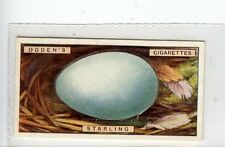 (Jc3003-100)  OGDENS,BIRDS EGGS,STARLINGS EGG,1923,#39