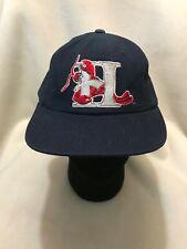 Hickory Crawdads MILB Yupoong Snapback Hat
