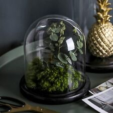 """Decorative Clear Glass Dome/Tabletop Cloche Bell Jar Display Case (4.6""""X5.8"""")"""