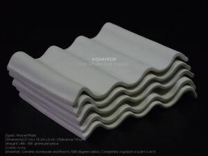 Pleco Ceramic Waved Plate 1 Set: 5 pcs