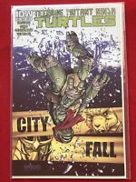 TMNT Teenage Mutant Ninja Turtles #22 (IDW) - Cover A - 1st printing (May, 2013)