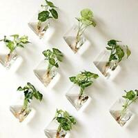 Natural Wall Hanging Plant Terrarium Glass Planter Diamond Pots New Baskets F9W7
