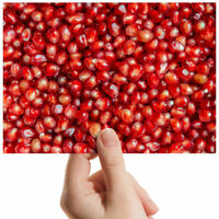 "Delicious Pomegranate Seeds Small Photograph 6"" x 4"" Art Print Photo Gift #3575"