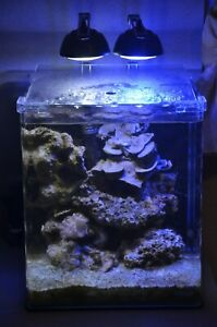 2x EHEIM Power LED  Marine & Daylight 7 Watt LED Meerwasser Nachtlicht