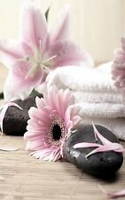SUPERB PINK FLOWERS STONES SPA CANVAS #563 FLORAL A1 CANVAS PICTURE WALL ART
