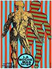 Decorative Poster.Interior wall art design.Decor.Muscle man Anatomy art.4058