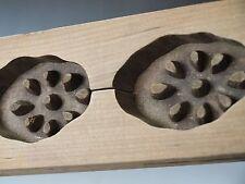 ANTIQUE JAPANESE KASHIGATA Hand Carved Wooden Cake Mold - RENKON Lotus Root