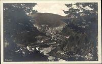 Triberg im Schwarzwald ~1920/30 Panorama Gesamtansicht Verlag Carle ungelaufen