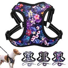 Dog Mesh Harness with Leash set Reflective Dog Walk Collar Safety Strap Vest