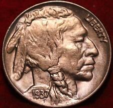1937 Philadelphia Mint  Buffalo Nickel