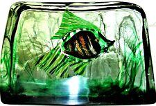 Large Cenedese Murano Italy Glass Block Fish Aquarium Paperweight EX CONDITION!