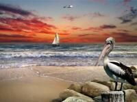 "Ocean Sunset Pelican Sailboat Beach Jigsaw Puzzle 285 Pieces 16.5""X12"" Piece NEW"