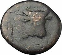Larissa Phriconis in Aeolis 400BC Original Ancient Greek Coin Female Bull i49647