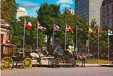 Montreal Quebec Canada Postcard Horse Carriage Sight Seeing French City