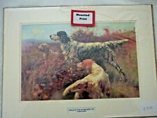 More details for english setters on the moors 1901 by thomas blinks dog print mounted for framing