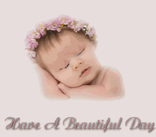 286 PINK SATIN & ROSES REBORN/BABY/ AUCTION TEMPLATE