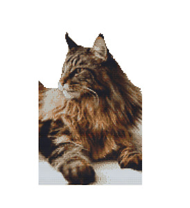 CROSS STITCH KIT-MAINE COON CAT 14 COUNT CHART ONLY OR FULL KIT