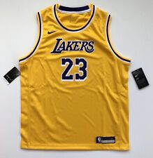 Youth XL LeBron James Los Angeles Lakers Nike Icon Gold Swingman Jersey