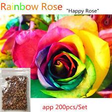 200pcs/Bag Colorful Rainbow Rose Flower Seeds Garden Plants Seeds Flower Seeds