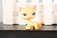 LPS  #339 Orange Short Hair Cat Brooke Hayes Blue Eyes