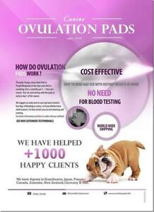 CANINE OVULATION TEST PADS - Pink Pads x 50