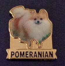Pomeranian Dog Breed Lapel Pin