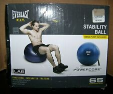 Everlast F.I.T. 65Cm Stability Ball With Pump (4-1)