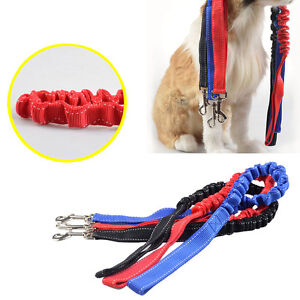 Pet Dog Leash Puppy Training Double Lead Belt Elastic Bungee Traction Rope Doggy
