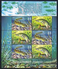 Belarus 2011 Fish/Pike/Burbot/Nature/Angling/Sport/Fishing 6v sht (n33096)