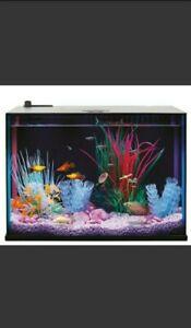 Top Fin Dazzle Aquarium Starter Kit-5 gal with HITOP Adjustable Aquarium Heater
