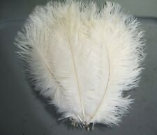 """1 Ostrich herl feather..9-11"""" Plumes>Drabs>10 Color Choices>feathers"""