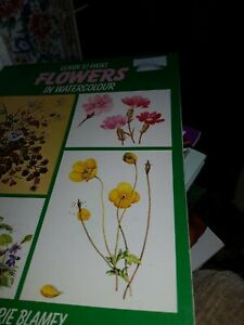 Learn to Paint Flowers in Watercolour by Marjrie Blamey, Paperback Book  NEW