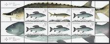Bund H-Blatt 49 ** Süßwasserfische 2015  postfrisch,der Bogen ist ungefaltet !!!
