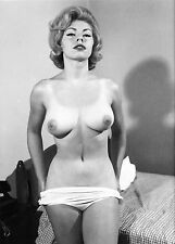 1960s Nude pinup Huge Breasts removing her clothes 8 x 10 Photograph