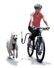 Springer Dog Exerciser Kit Safely Attaches to Your Bike for Exercise and Fun