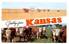 Greetings From Kansas Postcard Cows Combines Harvest Wheat Grain Cattle 1958