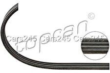 V-Ribbed Drive Serpentine Belt Fits RENAULT Megane MPV Sedan Wagon 1996-2003