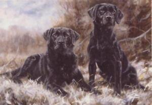 Black Labrador Dog Puppy Christmas Xmas Card