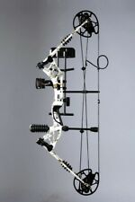 Compound Bow Arrow Kit 30-60lbs 329fps Archery Hunting Shooting Target