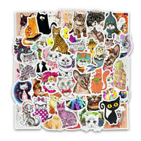 Cartoon Cats Sticker Pack, PVC Vinyl, Kittens Kitty Laptop Decal Bomb Lot, 50pc