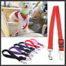 Adjustable Pet Dogs Safety Car Vehicle Seat Belt Harness Lead Pet Seatbelt Nylon