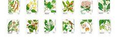 Palau - 1987 - Flowers Definitives - Set of Twelve - MNH