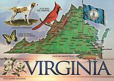 Virginia The Old Dominion State, Foxhound, Richmond, Norfolk etc. - Map Postcard