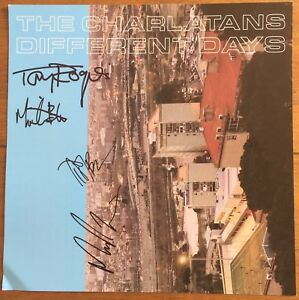 """The Charlatans - Different Days 12""""x12""""  Art Print Signed Autographed"""