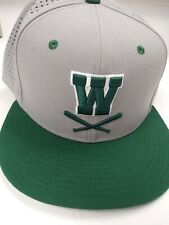 "Nike True Dri-Fit Size 7 3/4 (62 cm) Baseball Hat Cap , Green/Gray. ""W"" on front"