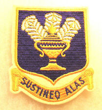 "WWII AAF TECHNICAL TRAINING COMMAND EMBROIDERED ON WHITE FELT 3 3/4"" TALL"