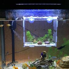 Aquarium Isolation Box Fish