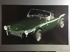 1965 Ford 289 Cobra Roadster Print, Picture, Poster RARE!! Awesome L@@K