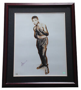 Muhammad Ali Signed 16x20 young Cassius Clay photo framed auto OA Steiner COA